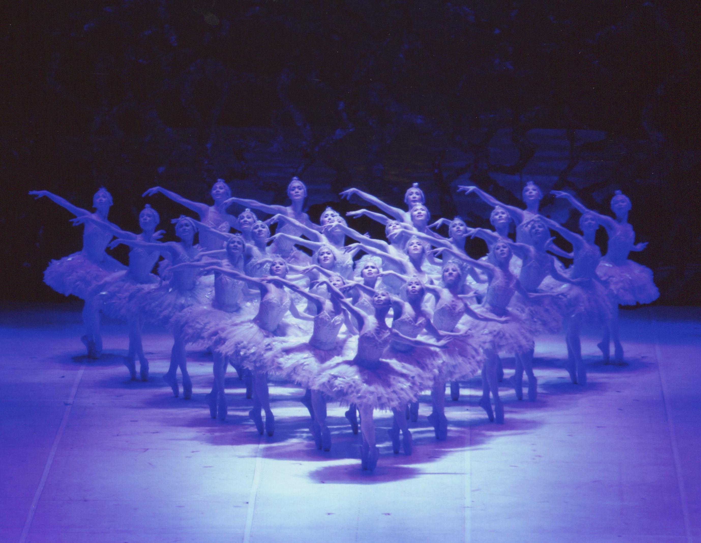 松山バレエ団新春公演 新「白鳥の湖」の画像